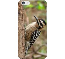Ladder-Backed Woodpecker iPhone Case/Skin