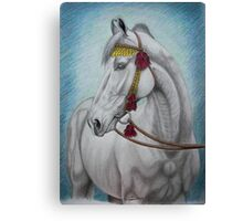 """India Royalty"" Canvas Print"