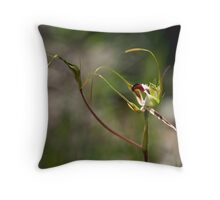 King Spider Orchid - Mt Barker Summit Throw Pillow