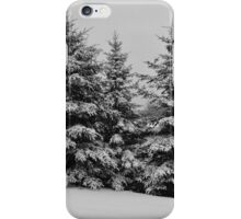Frosted Trees iPhone Case/Skin