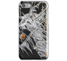 Robins and ice.  iPhone Case/Skin