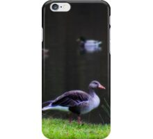 Grazing geese iPhone Case/Skin