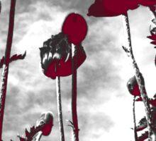 Poppies - Noir Sticker