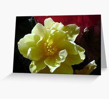FLOWERS(MACRO) Greeting Card