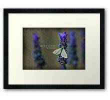 serendipitous flutterby  Framed Print