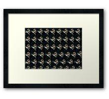 Potter Framed Print