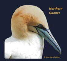 Northern Gannet Kids Tee