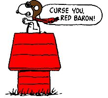 Snoopy vs Red Baron Photographic Print