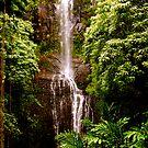 Hawaiian Waterfall by Audrey French