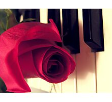 The Music Rose Photographic Print