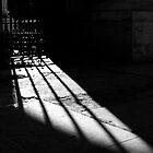 Noir by Oli Johnson