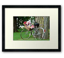 bicycle n the park Framed Print