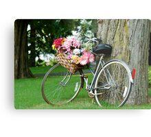 bicycle n the park Metal Print