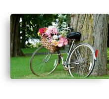 bicycle n the park Canvas Print
