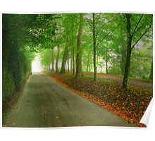 Wooded road Poster