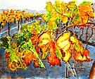 After the Harvest by Karen Ilari