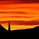 Tangerine Dreams by dgscotland