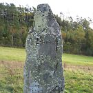 Standing Stone Individual by HELUA