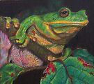Frog by Karen Ilari