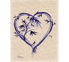 Purple Heart #2 Photographic Print