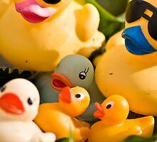 Duck Family by Nala