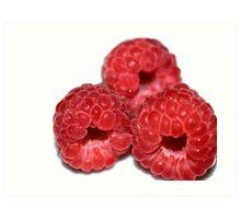 Razzzberries Art Print