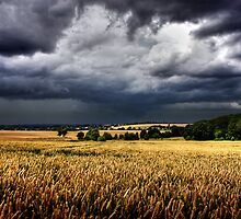 storm clouds over wheat field by imaginaryfriend
