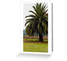 Palm Tree living in the vineyard Greeting Card