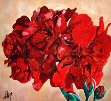 Geranium Bloom by Jim Phillips