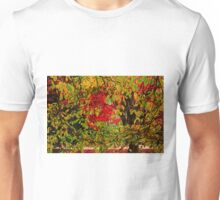 Craving for Colors Unisex T-Shirt