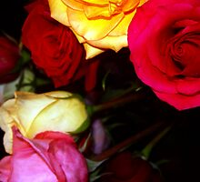 My Roses 15 by Mariam Muradian