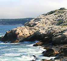 Cliffs In Herring Cove by HALIFAXPHOTO