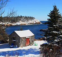 The Old Shed by HALIFAXPHOTO