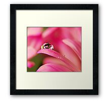PINK Collection for the Cure - Reflecting Tears  Framed Print