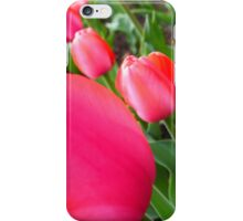 Tulip Textures 26 iPhone Case/Skin