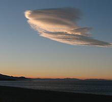 Soaring Sky by CassPics