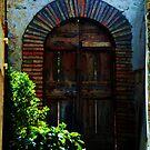 an old door  by Susan6110
