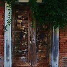 door from Venice by Susan6110