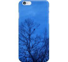 A Lone Perched Blackbird iPhone Case/Skin