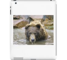 Bear Bath iPad Case/Skin