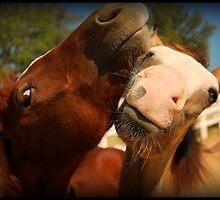 Just Horse'n Around by Karen Keaton