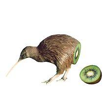 Kiwi fruit by joedoesart