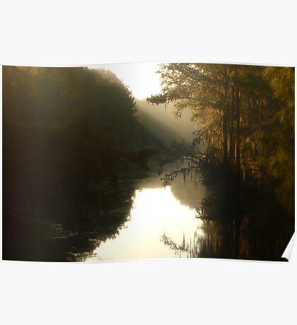 Louisiana Bayou Sunrise Poster
