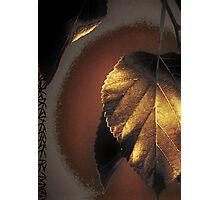 Goldleaf Photographic Print