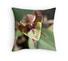 "Large Bird Orchid ""Chiloglottis valida"" #2 Throw Pillow"