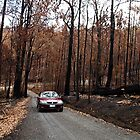 Ashen  driveway after fires of West Gippsland by Bev Pascoe
