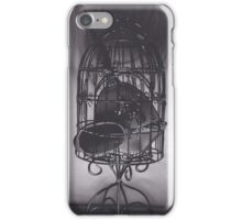 Realism Charcoal Drawing of Mirrors in Birdcage iPhone Case/Skin