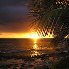 Sundown by Sean Jansen
