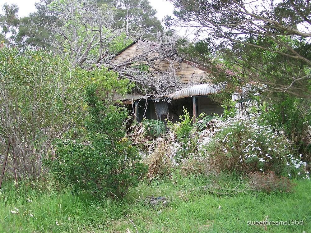 A Forgotten Garden by Carol Field