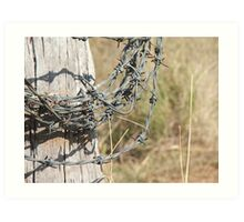Roll Of Barbed Wire Art Print